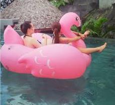 Fat Flaminggo